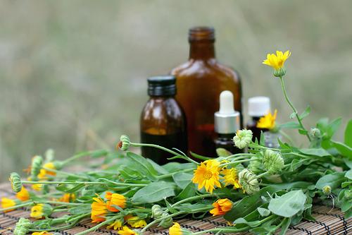 Akutní homeopatie brno